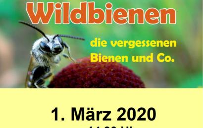 01.03.20 – Vortrag zu Wildbienen